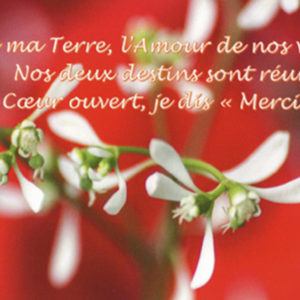 Carte postale photo-citation