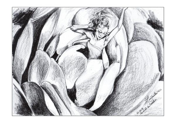 dessin fée Camellia