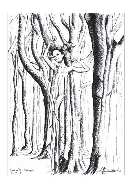 dessin fée Forêt Allemagne